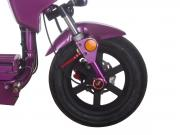 Front Fender and Shock