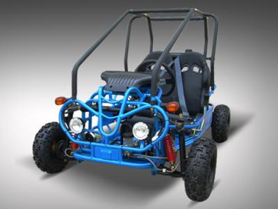 250 buggy wiring diagram get free image about wiring diagram