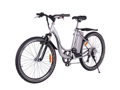 EBI007 Electric Bicycle