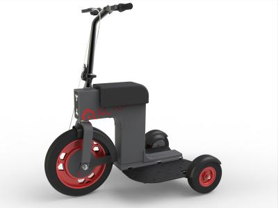 ESC008 Electric Scooter