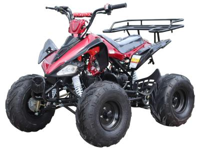 ATV030 125cc ATV