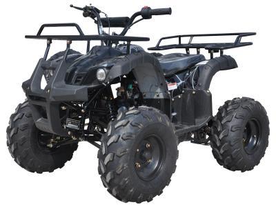 Alternative 20560