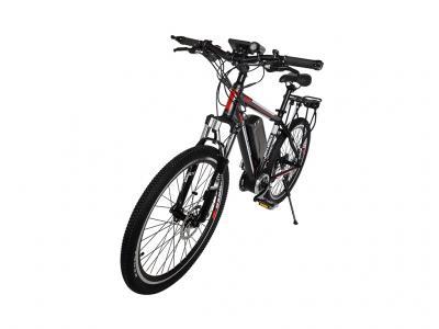 EBI019 350W Electric Bicycle