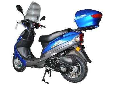 Alternative 21500