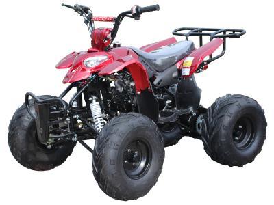ATV005 125cc ATV