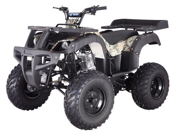 Taotao_Rhino250_200cc_ATV_Four_Wheeler