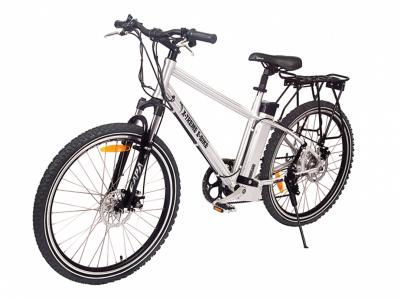 EBI013 300w Electric Bicycle - Silver
