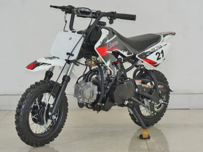 Alternative 25026