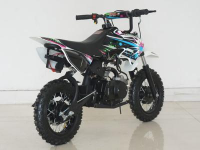 Alternative 25031