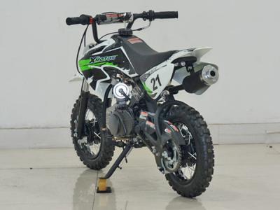 Alternative 25037