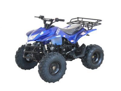 ATV099 125cc ATV