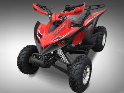 ATV110 200cc ATV - Black