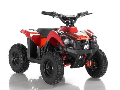 ATV113 Electric ATV