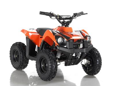 ATV113 Electric ATV