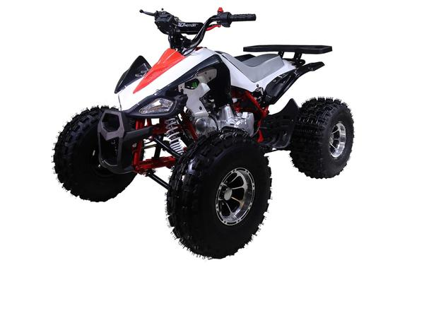Taotao_NEW_CHEETAH_125cc_ATV_Four_Wheeler