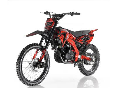 DIR039 250cc Dirt Bike