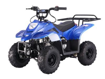 ATV119 110cc ATV