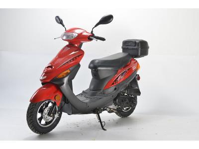 SCO184 50cc Scooter