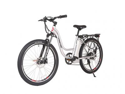 EBI014 300W Electric Bicycle