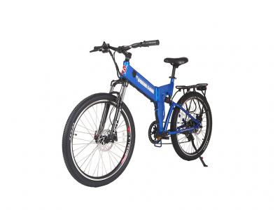 EBI015 300W Electric Bicycle