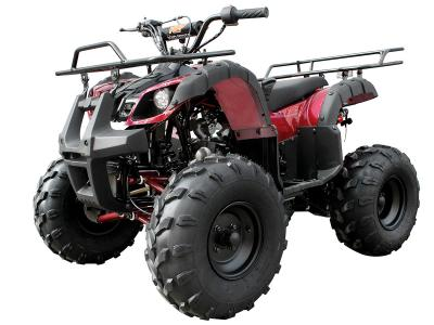 ATV006 125cc ATV