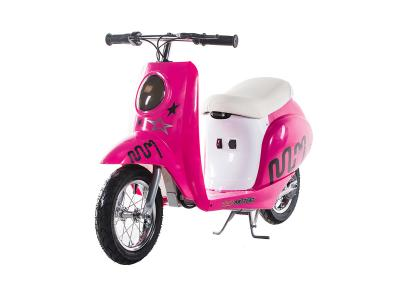 ESC030 250W Electric Scooter - Purple