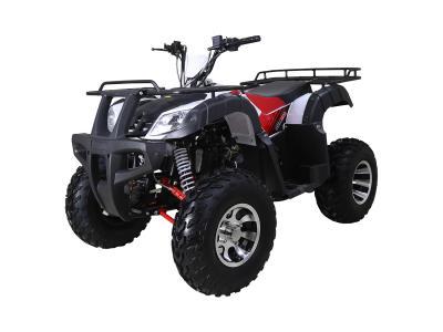 ATV134 169cc ATV