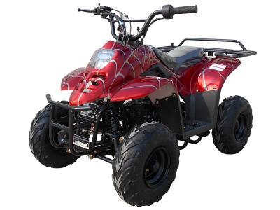 ATV001 110cc ATV