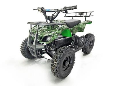 ATV137 Electric ATV