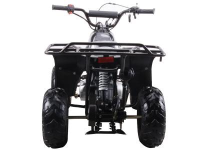 Atv054 110cc atv yamaha raptor clone automatic 16 tires for Mega motor madness reviews